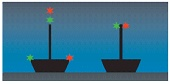 Diagram showing the correct navigation lights of sailing vessels underway