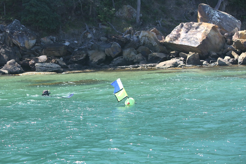 Flag on a buoy in water