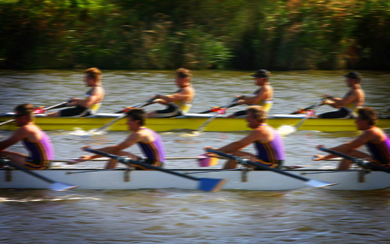 Rowers racing on a river